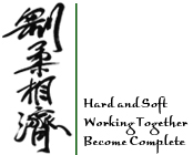 Hard and Soft, Working Together, Become Complete